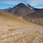 Der Permafrostboden ist für diese Rillen verantwortlich