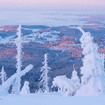Winterparadies NSG Hochwald Dreisesselberg